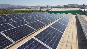 ¿Qué paneles solares son más eficientes?