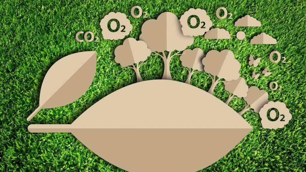 Calcular la huella de carbono de tu negocio