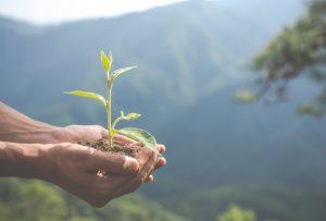 Eficiencia Energética en empresas: Consejos para ahorrar energía